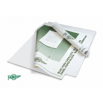 Bloc papel para caballetes 50 hojas lisas  plano